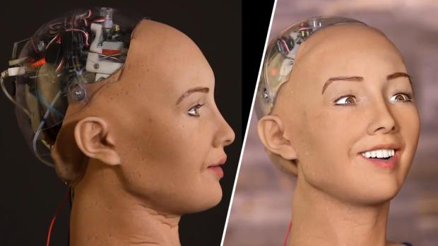 Sophia, the Human-Like Robot