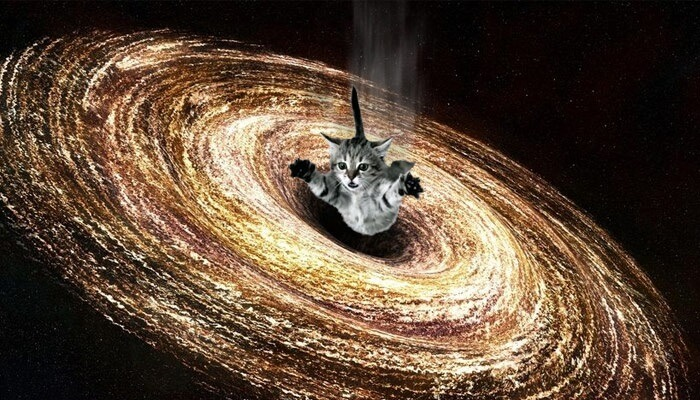 Kitty in Black Hole