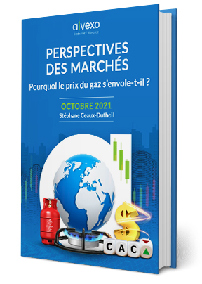 Pourquoi le prix du gaz s'envole-t-il ? - Ebook Octobre 2020